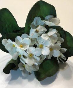Hvid viol buket