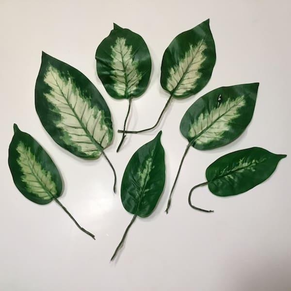 Lyse spraglede blade