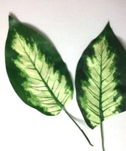 Dekorative blade