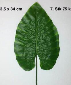 Meget store grønne blade