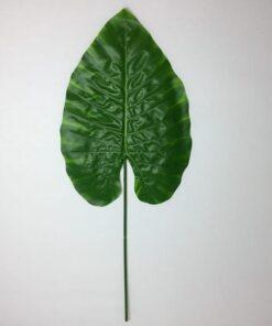 Meget stort grønt blad