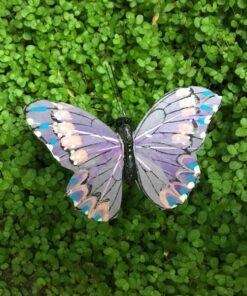 Lilla lille sommerfugl