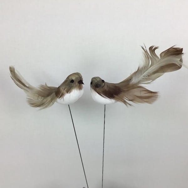 Spurv med lang hale