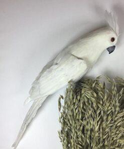 Kunstig hvid kakadue