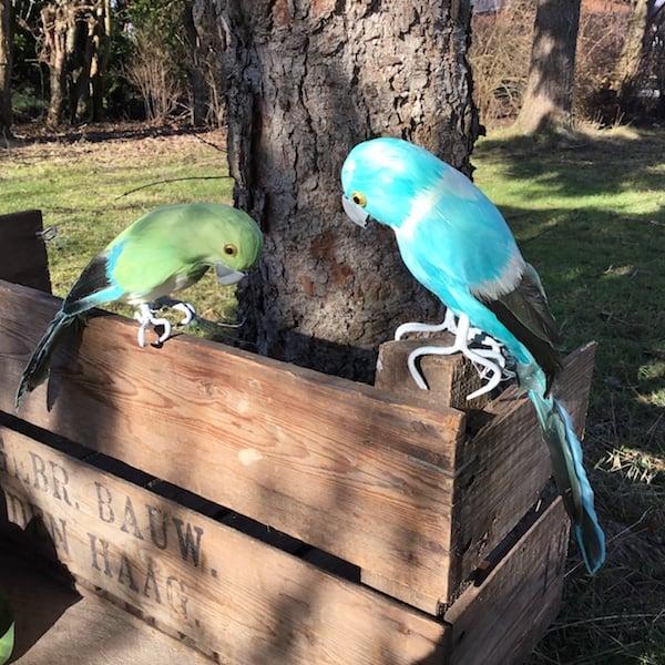 Kunstig turkis papegøje