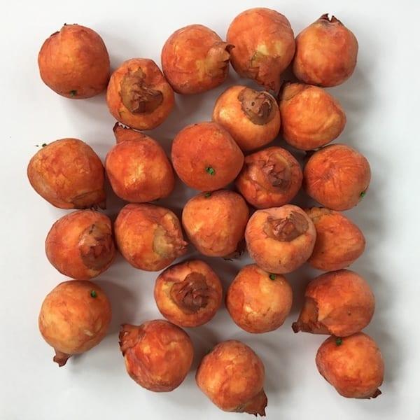 Orange tørrede frugter