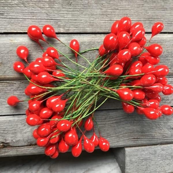 Røde ilexbær på tråd