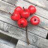 Røde æbler på tråd