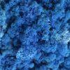 Islandsk mos blåfarve