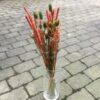Orange tørrede blomsterbuket