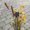 Tørrede blomsterbuket med lotus