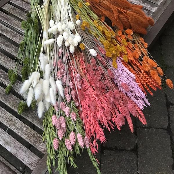 Tørrede blomster buketter i mange varianter