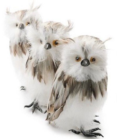 Ugle med strit hår