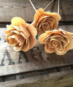 Træ rose i beige