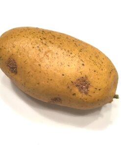 Naturtro kunstig kartoffel
