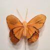 Gyldenbrun sommerfugl