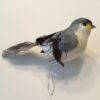 Dekorativ blågrå fugl