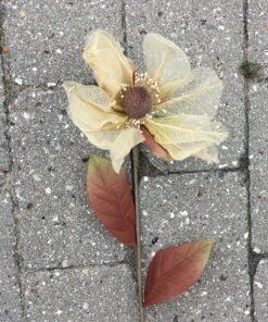 Magnolia stilk i cremefarvet