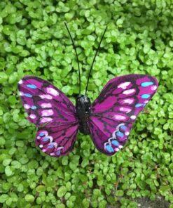 Mørk lilla lille sommerfugl