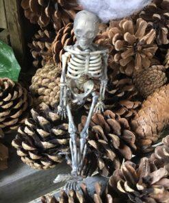 Skelet dekoration