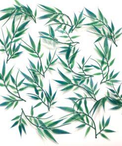 Turkis grøn vandplanter