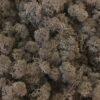 Islandsk mos brun farve