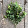 Naturtro lys buksbom kvist