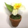 Dekorativ mini påskelilje