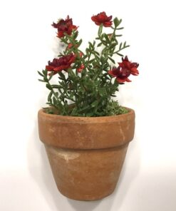 Rød dekorativ mini blomst