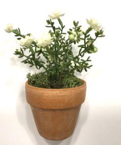 Hvid mini blomst