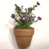 Lilladekorativ mini blomst