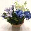 Mini blomst blå pastelfarve