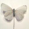 Lys grå dekorativ sommerfugl
