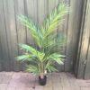 Kunstigt Areca palme
