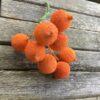 Orange bær kugler