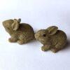 Mini kaniner