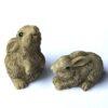 Små kaniner i poly